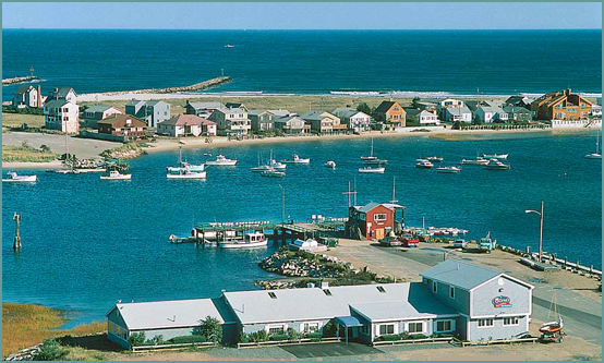 Best Seafood Restaurants In Maine