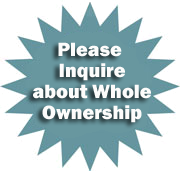 Ownership Options