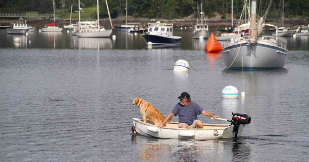 pet-friendly-dog-ride